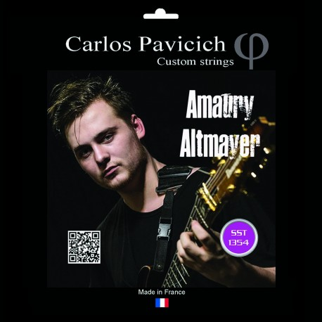 Set Amaury Altmayer 6 strings NPS 10-54