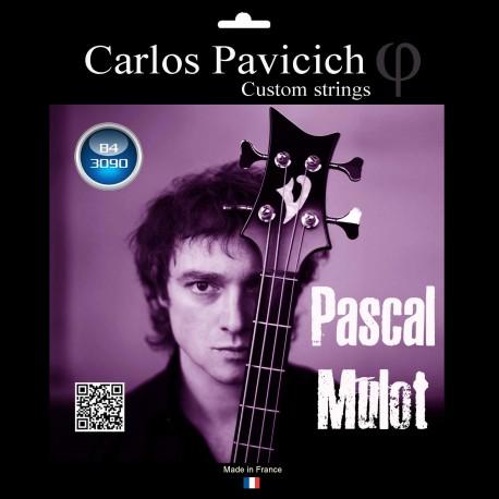 Pascal Mulot   4 trings Bass set 30-90