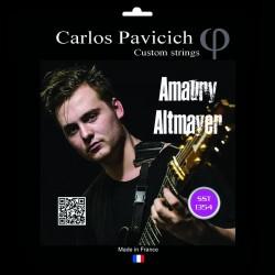 Jeu Amaury Altmayer 6 cordes NPS 10-54
